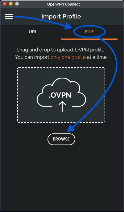 OpenVPN import profile